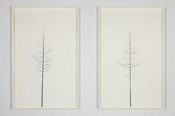 PETER LIVERSIDGE Winter Drawing (Summer Version), 30 vs. 31 Winter Drawing (Summer Version), 29 vs. 32, 2011 paper, black masking tape (diptych) paper: 94 1/2 x 59 3/8 inches (240 x 150.8 cm) each framed: 98 1/4 x 63 1/8 inches (249.6 x 160.3 cm) each © Peter Liversidge Courtesy: Sean Kelly, New York