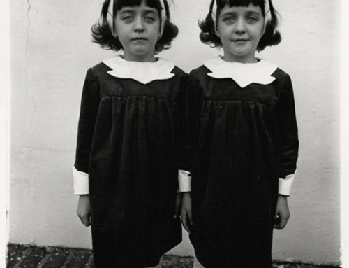 Diane Arbus, Seven Years Making a Difference